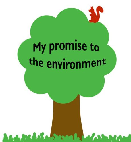 Environmental Facts 10 Interesting Environmental Facts
