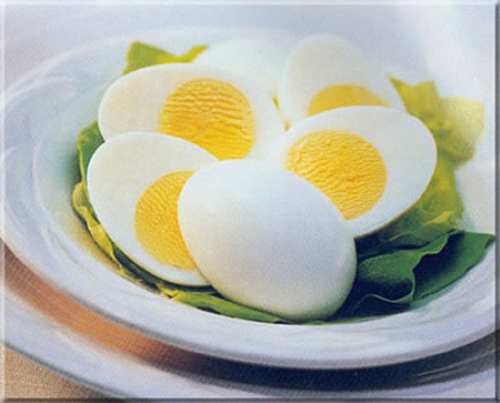 Delicious Eggs 10 Interesting Egg Facts