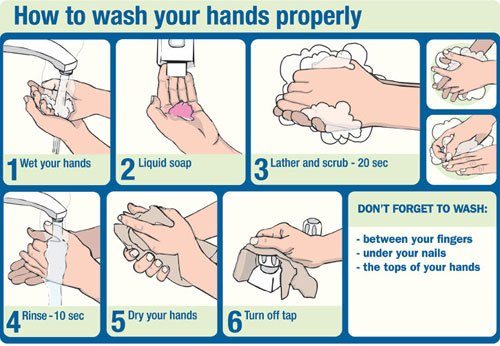 Proper hand washing 10 Interesting Hand Washing Facts
