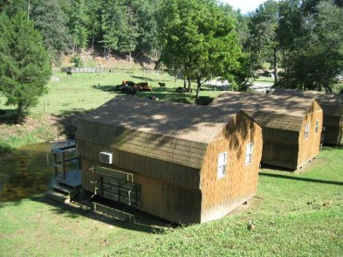 daniel boone family campground