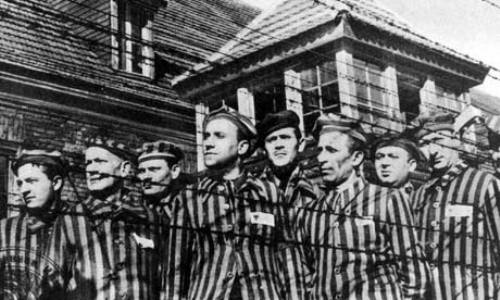 Holocaust Facts 10 Interesting Holocaust Facts