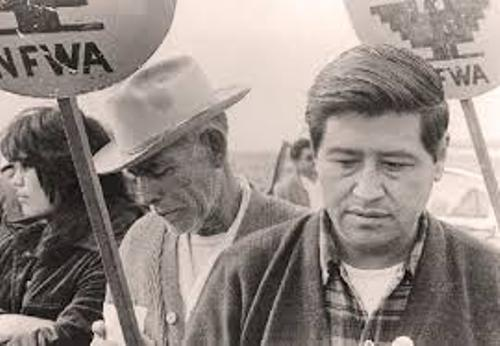 Cesar Chavez Young 10 Interesting Cesar Chavez Facts