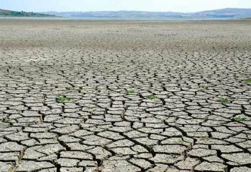 drought weather