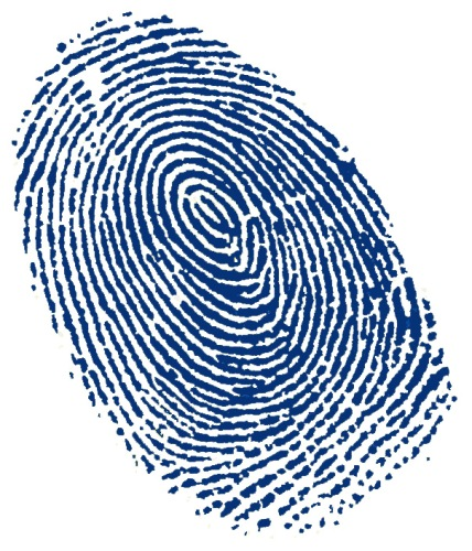 fingerprint 10 Interesting Fingerprint Facts