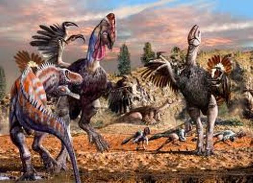 Gigantoraptor Look