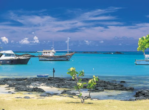 40 Facts About the Indian Ocean | The 7 Continents of the ... |Indian Ocean Facts