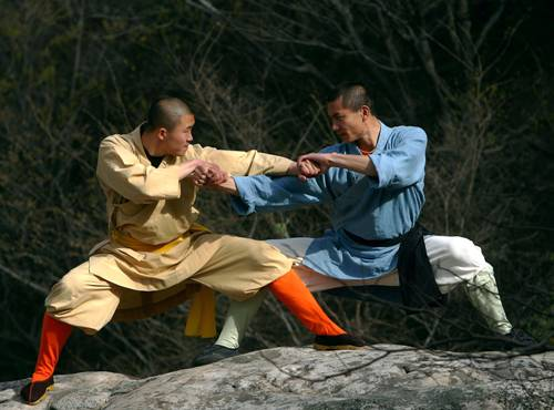Kung Fu Fights