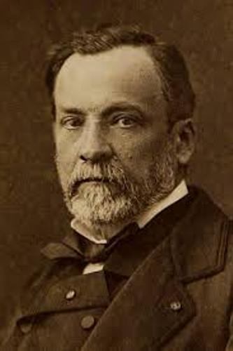 Louis Pasteur Facts