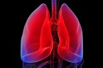 10 Interesting Lung Facts