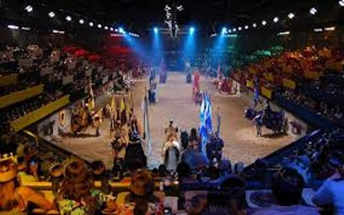 Medieval Times Pic