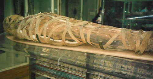 Mummification Facts