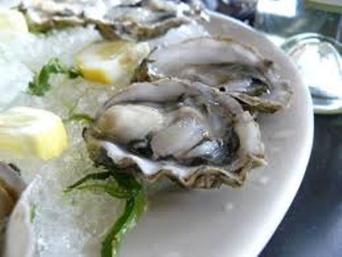Oyster Food