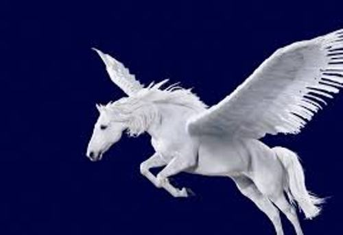 Pegasus Flies