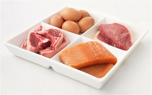 8 interesting protein facts my interesting facts