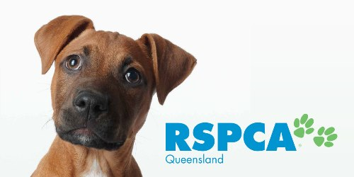 RSPCA Queensland