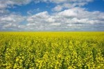 10 Interesting Saskatchewan Facts