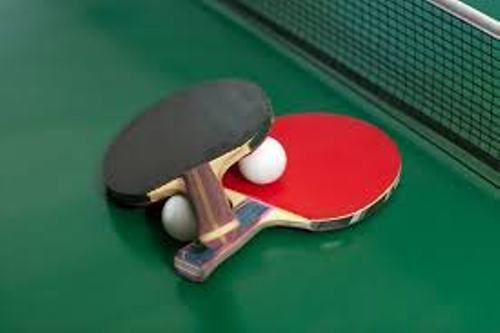 Table Tennis Facts