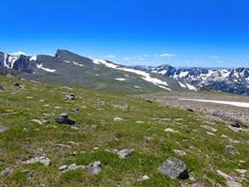The Alpine Tundra