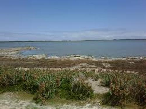 The Coorong Pic