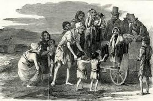 the importance of the potato famine to ireland The employment problem in pre-famine ireland food shortages before the great irish famine relate the history and migration of the potato and its importance.
