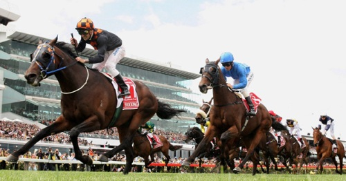 The Melbourne Cup Pictures