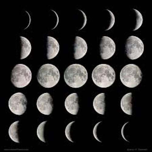 The Moon Phases Image