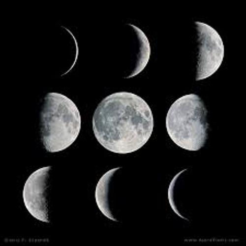 The Moon Phases Pic