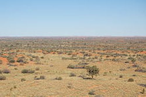 the simpson desert pictures