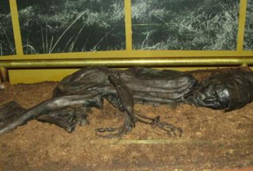 the tollund man facts