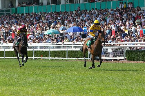 Uttoxeter Race