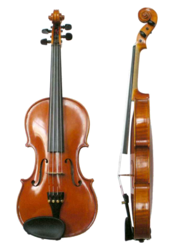Facts about Violin