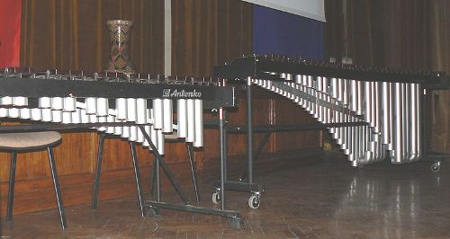 facts about Xylophone