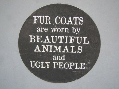 Animal Rights Motto