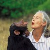 10 Interesting Jane Goodall facts