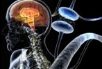 10 Interesting Parkinson S Disease Facts