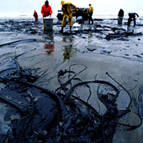 Oil Spill Facts
