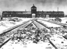 10 Interesting Auschwitz Facts