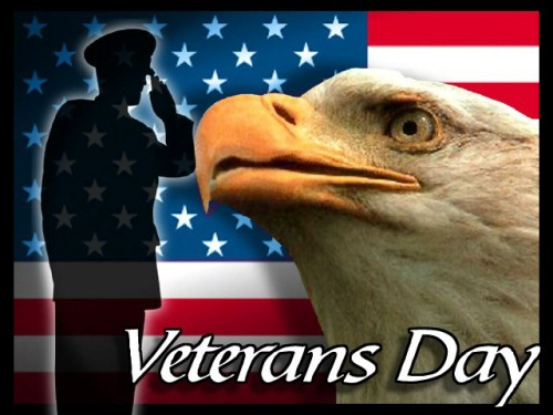 Veterans Day in US