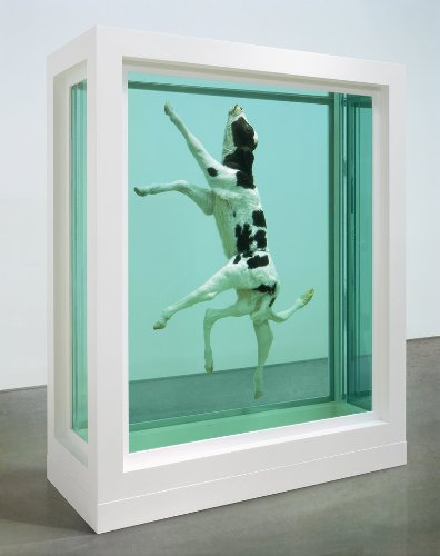 Damien Hirst Subject