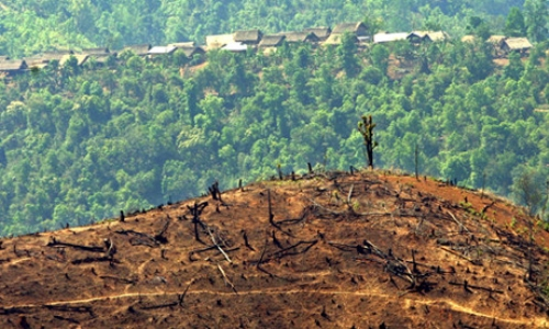 Deforestation in Burma
