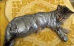 10 Interesting Duct tape Facts