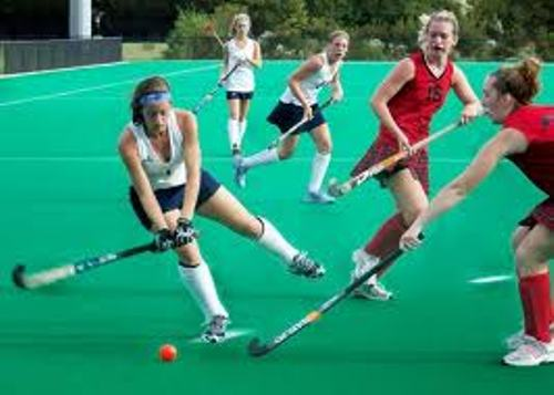 10 Interesting Field Hockey Facts My Interesting Facts