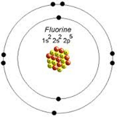 10 Interesting Fluorine Facts | My Interesting Facts