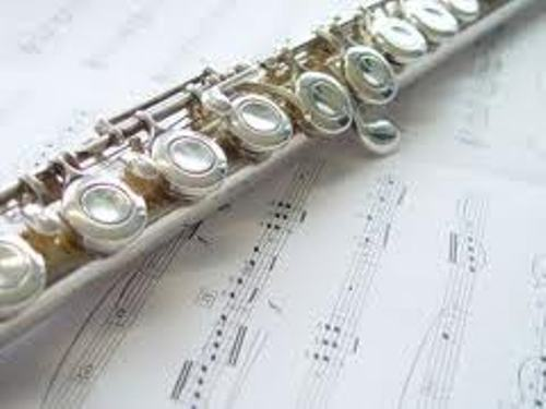 Flute facts