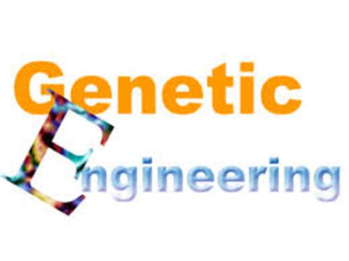Genetic Engineering facts