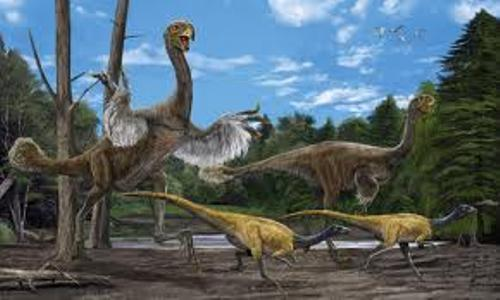 Gigantoraptor facts