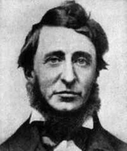 Henry David Thoreau Pic