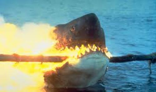 Jaws Fire