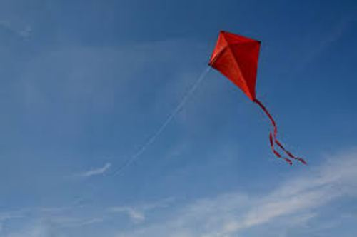 kite facts