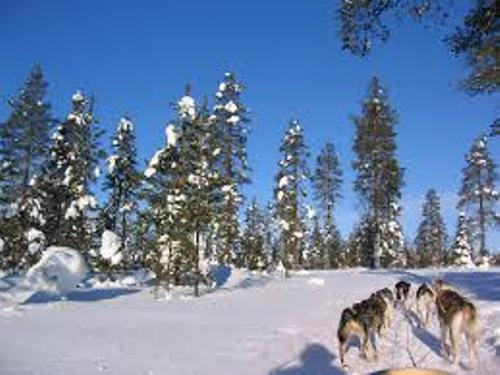 Lapland Facts